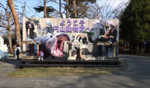 円山動物園 いい歯の日イベント ZOOっと8020!